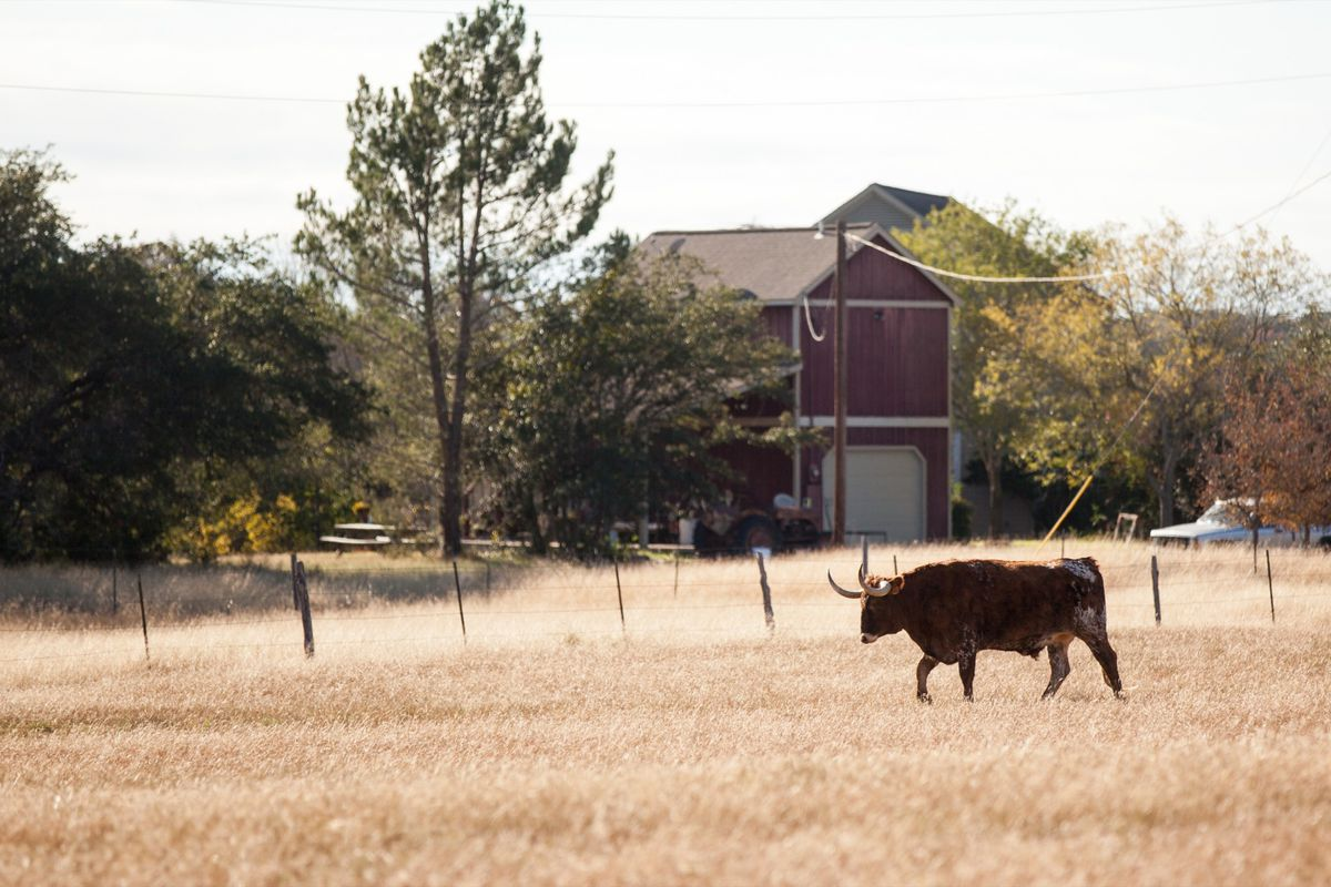 dripping springs Come & play with us  the hill country beckons to you – and the gateway to that beautiful scenery begins in the small, slow-paced and welcoming city of dripping springs.